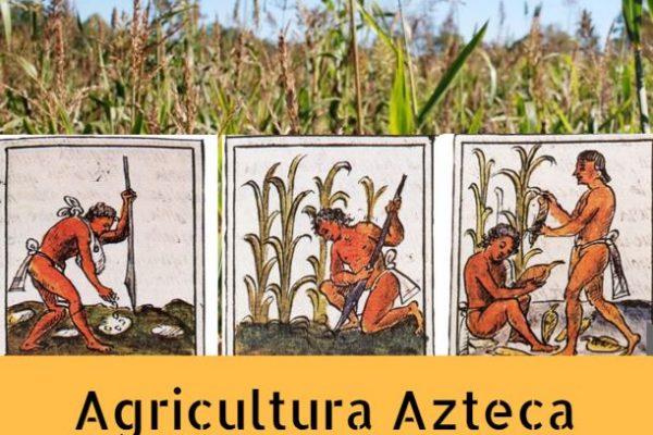 Agricultura de los Aztecas