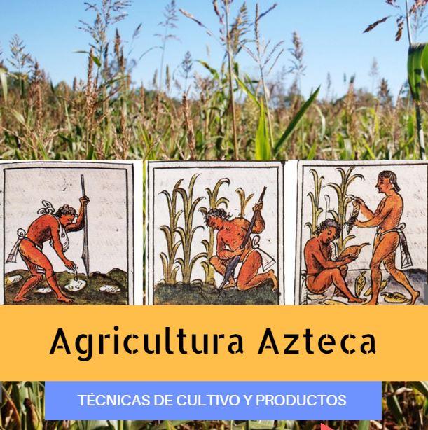 Agricultura Azteca Qué Cultivaban Los Aztecas Técnicas